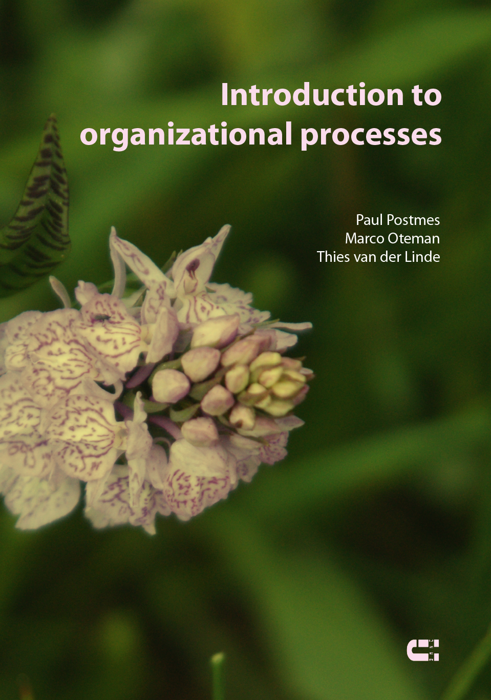 Oteman Introduction to organizational processes